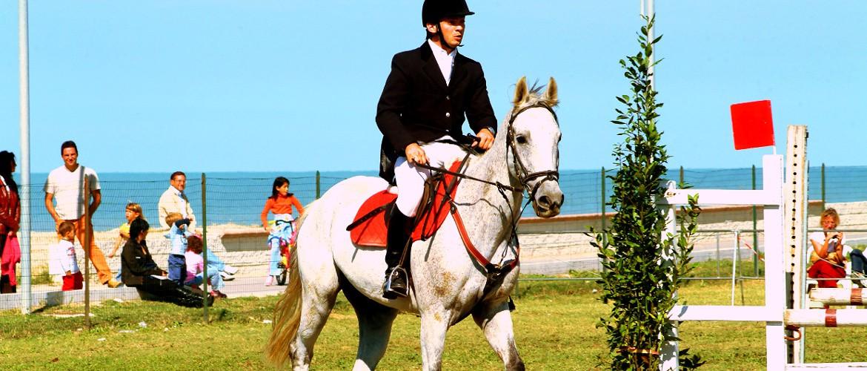 cavallo_al_salto-dott-latorre