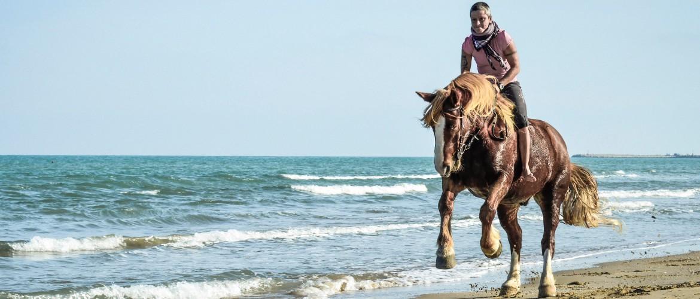 Cavallo spiaggia Giulianova